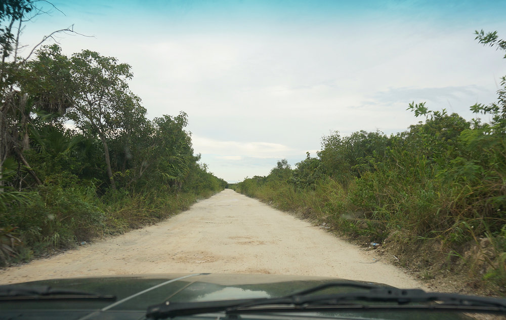 The dirt road leading to Villa Chenera, our wedding venue /  El camino a Villa Chenera
