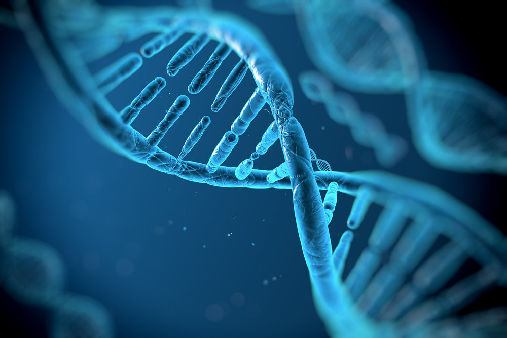 Genetic Errors May Cause Glutathione Deficiencies