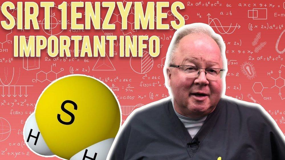 sirt 1 enzymes.jpg