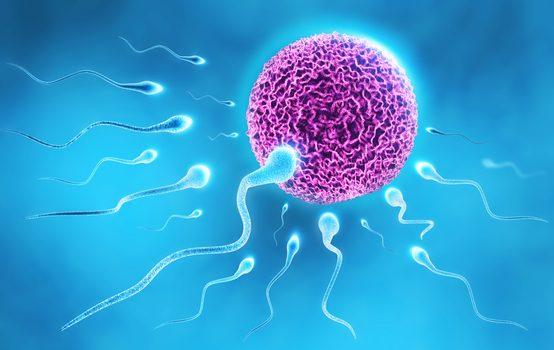 Infertility 2.jpg