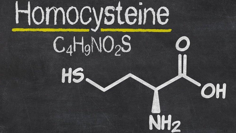 Homocysteine.jpg