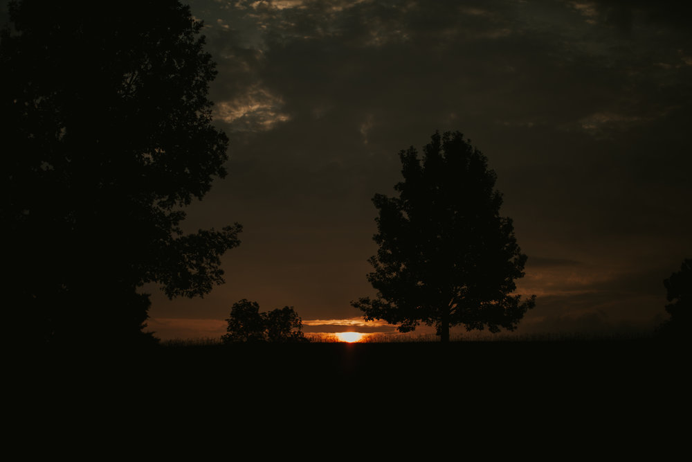 kirstiandrowland-1.jpg