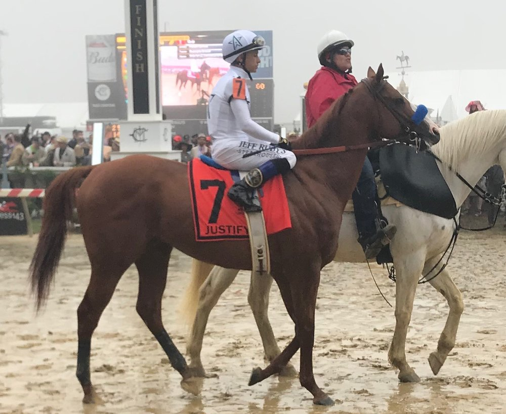 Justify, the only the second horse in history to win the Kentucky Derby and the Preakness who did not run as a two year old, on his way to the Start gate at Sunday's Preakness