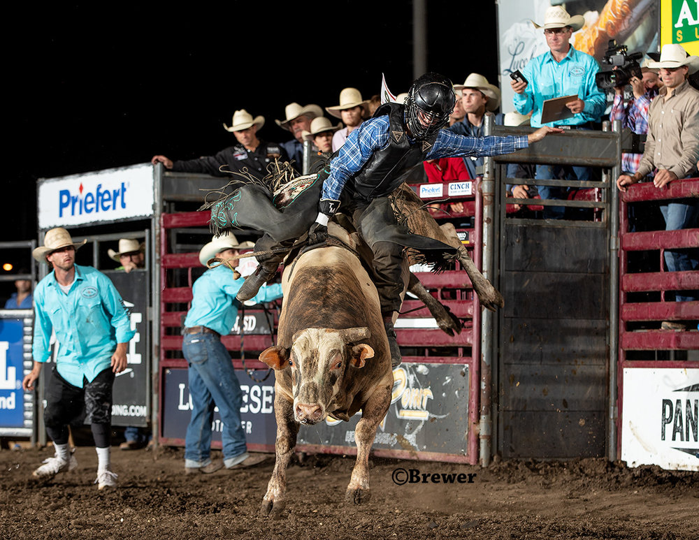 Tristan Mize, Bryan, Texas wins the average title on 277 Dirty Little Secret at the Red Wilk Tuff Hedeman Bull Bash in Huron, South Dakota