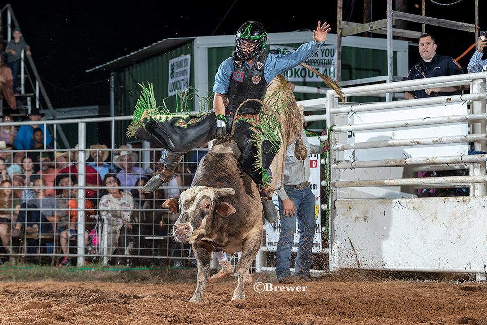 Cody Rostockyj rides 277 Dirty LIttle Secret, owned by Harris Bucking Bulls