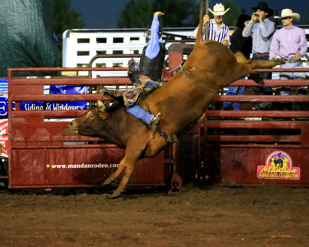 Koby Radley of Montpelier, La., rode Dakota Rodeo's Soup In A Group for 91.5 points to win f the Mandan Rodeo Day on July 2. Photo by Jackie Jensen