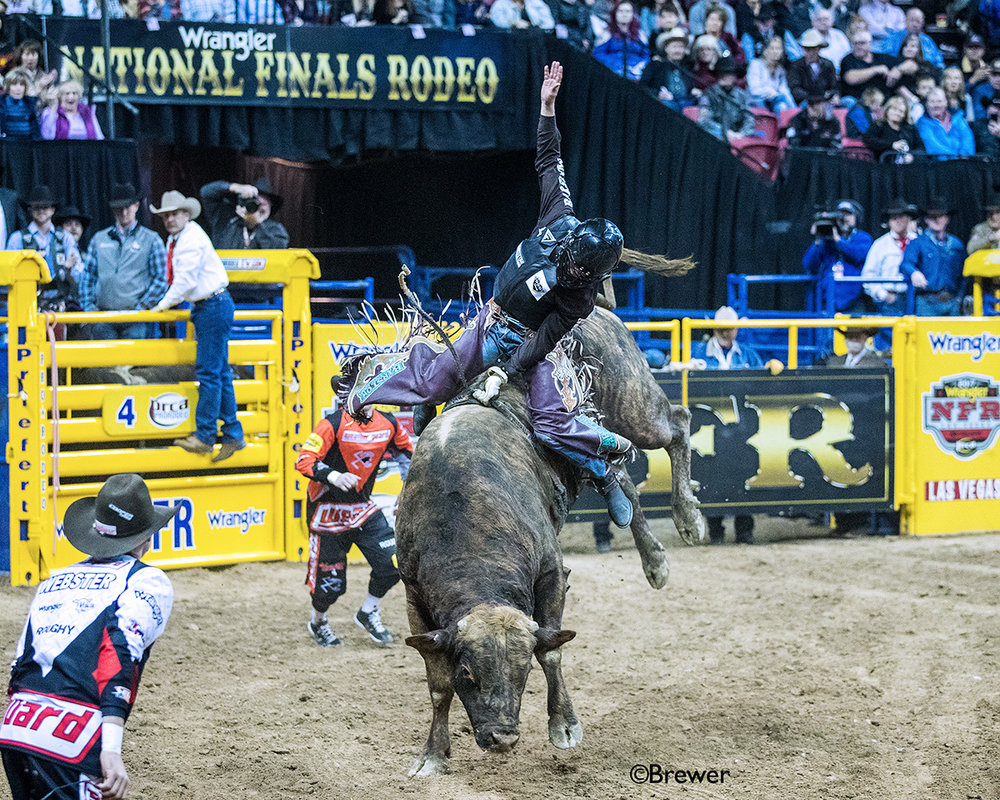 Two-time NFR qualifier Boudreaux Cambpell, Crockett, Texas.  Photo by Todd Brewer