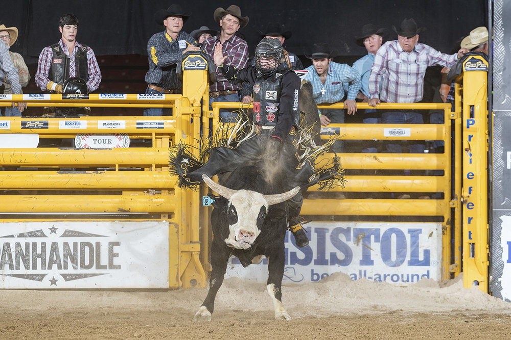 No. 2 ranked PRCA bull rider Parker Breding at the South Point Tuff Hedeman Bull Riding Tour event in March.  Photo Credit: Todd Brewer