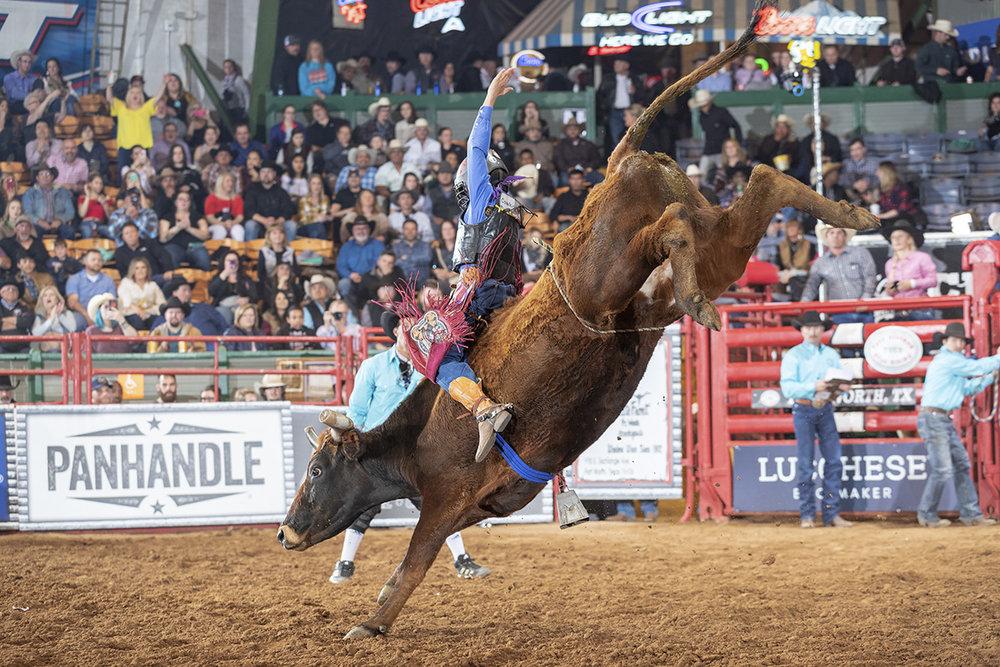 WEB THT Ft. Worth '18 824 Steer Riding.jpg