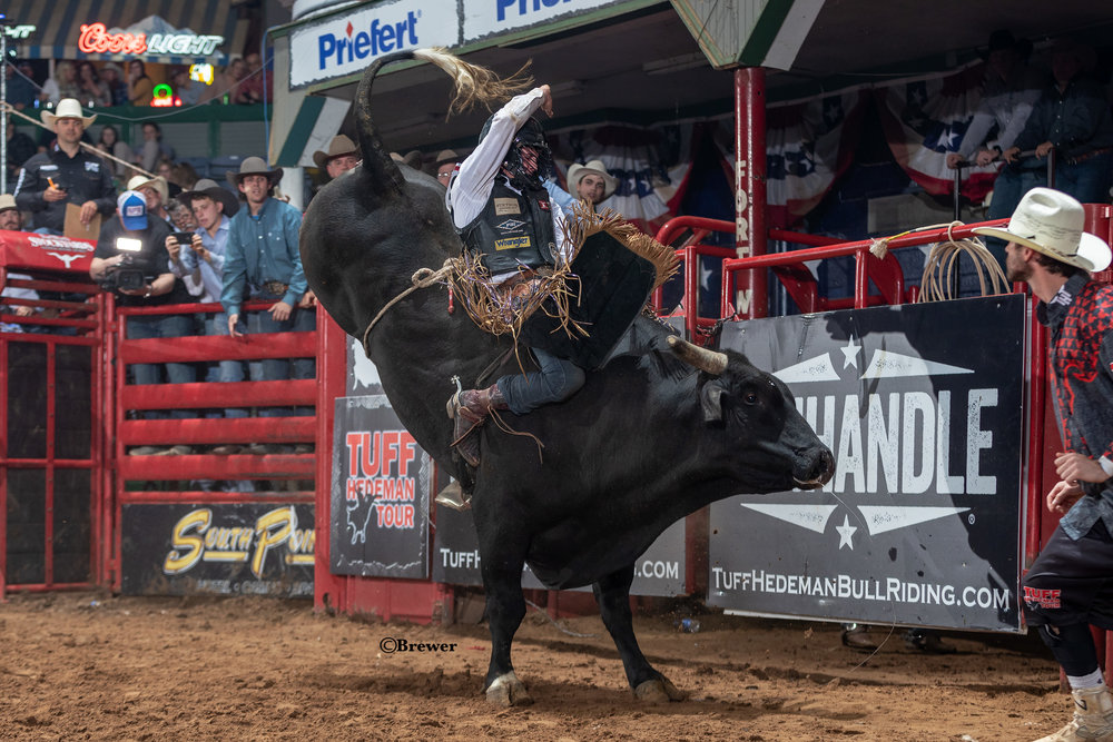 THT Ft Worth '19 1769 Stetson Wright-510 Blame It On the Whiskey(JQH).jpg