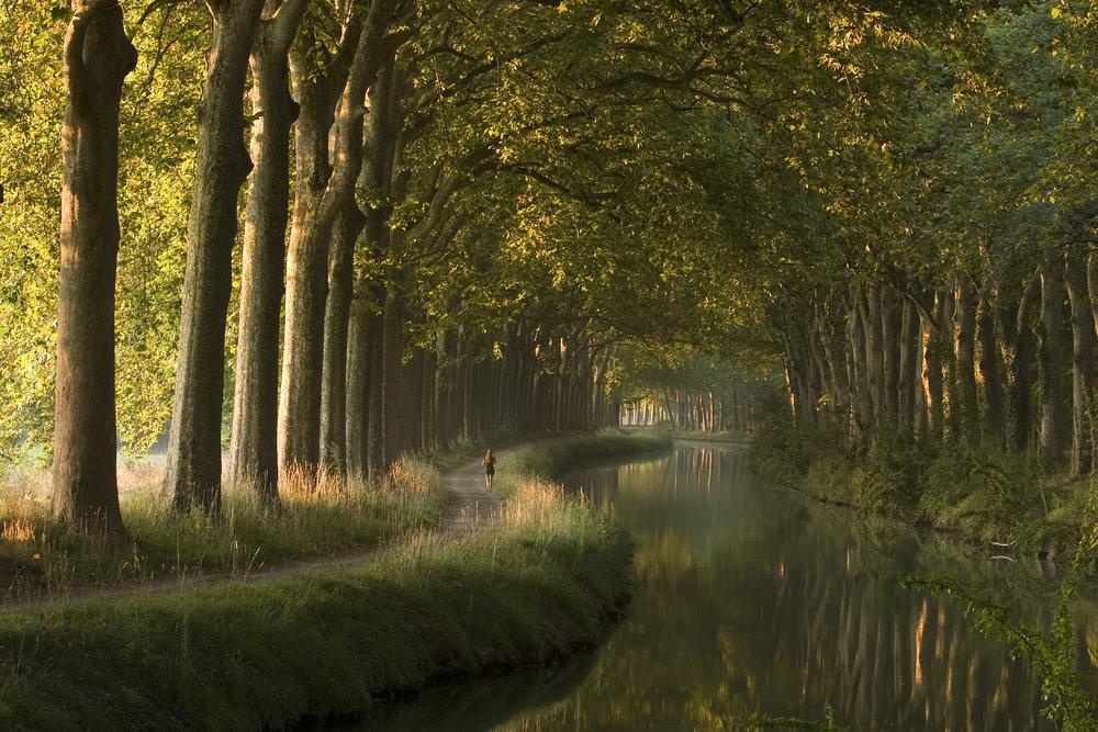 The beautiful Canal du Midi