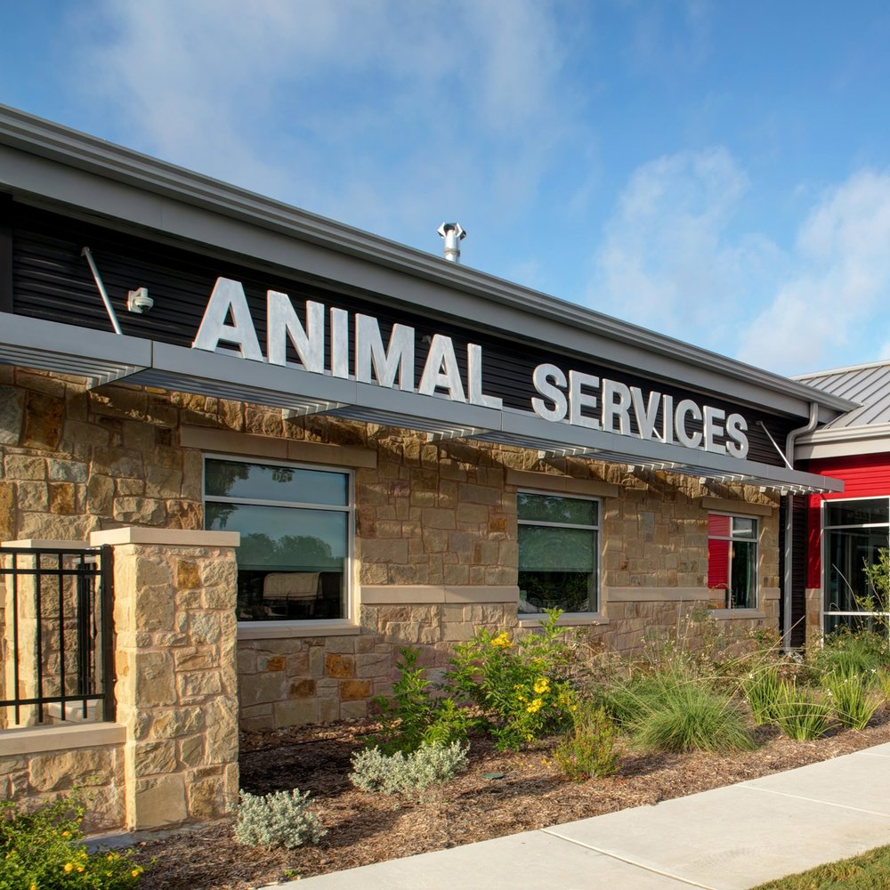 Animal Care Design