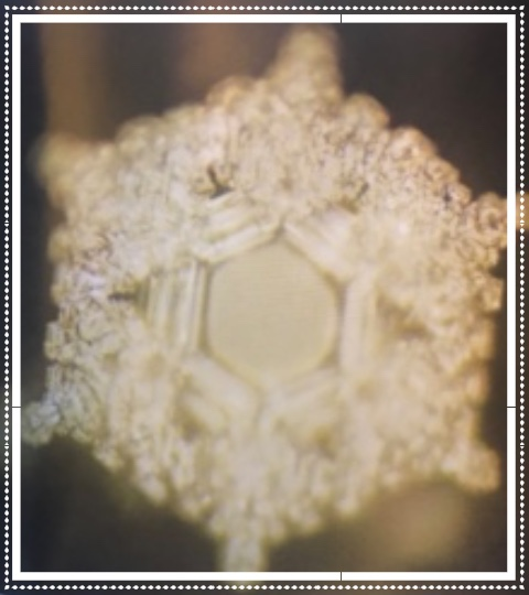 "Water crystal formed after being exposed to the words, ""Love and Gratitude""  ( The Hidden Messages in Water , by Masaru Emoto, p. 5)."