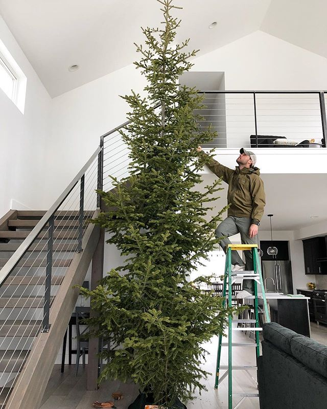 This Sunday's your last chance:  The Final Maslow House Open House 12/9 2-4p It's going to be festive! 🎄  We're getting ready with the help of @bozemanliving and the joyful sounds of @sufjanstevensfc Christmas albums.  What's your go-to Christmas song? We'll add it to the playlist for Sunday! #maslowhouse