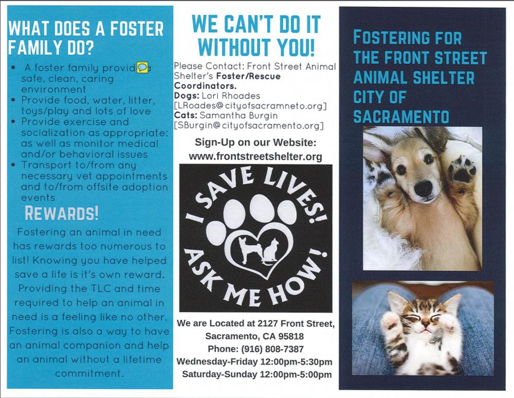 Foster Brochure pg1.PNG