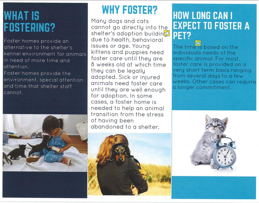 Foster Brochure pg2.PNG