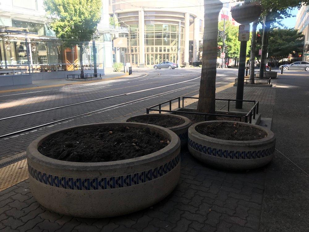 Empty planters on K Street