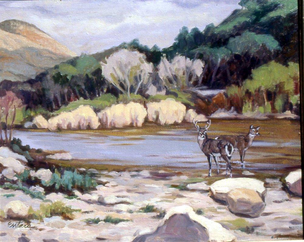 deer_river.jpg