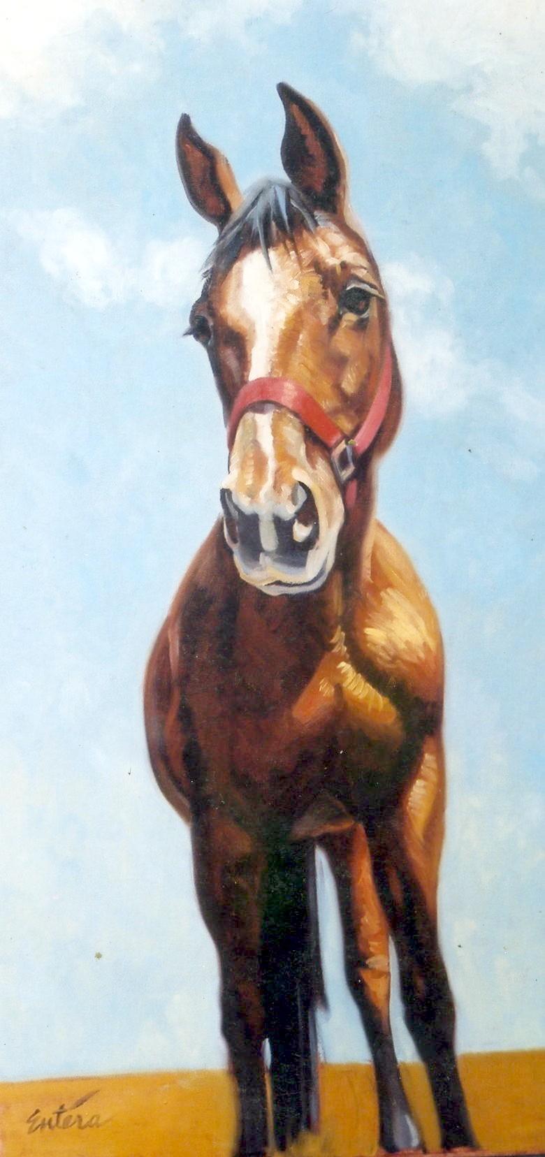 curious_horse.jpg