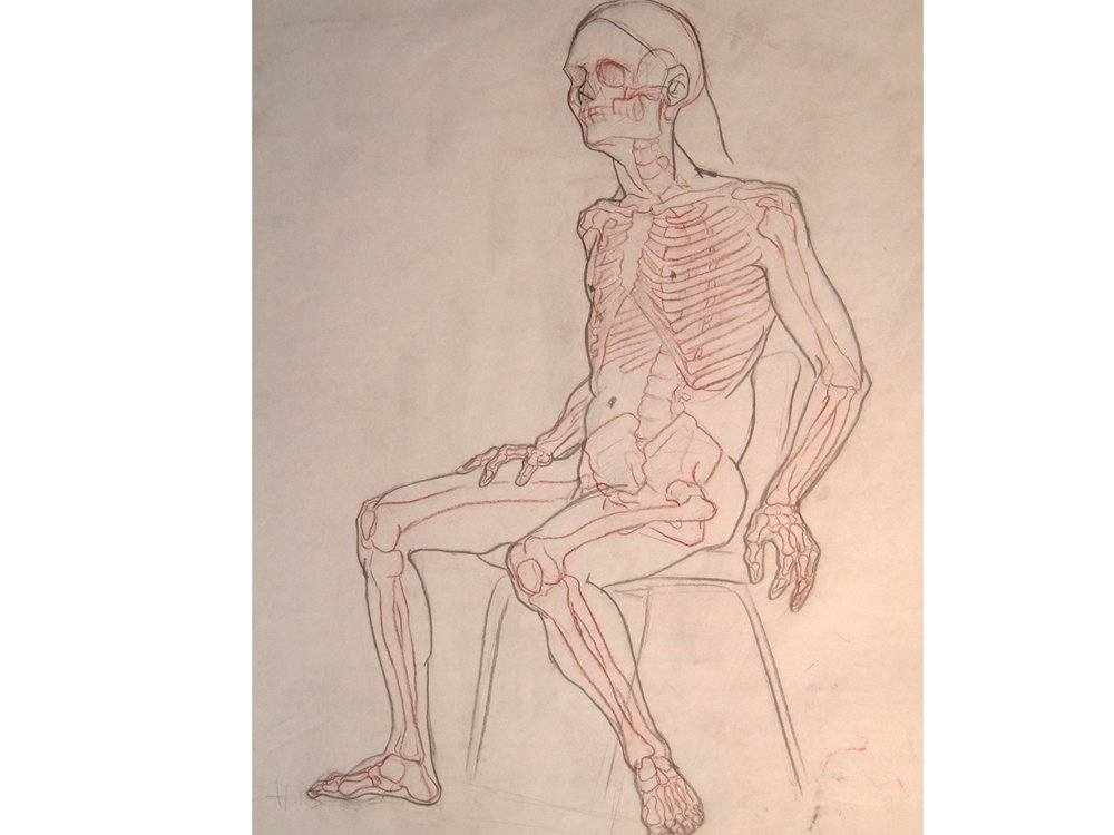 w_study_with_skeleton.jpg