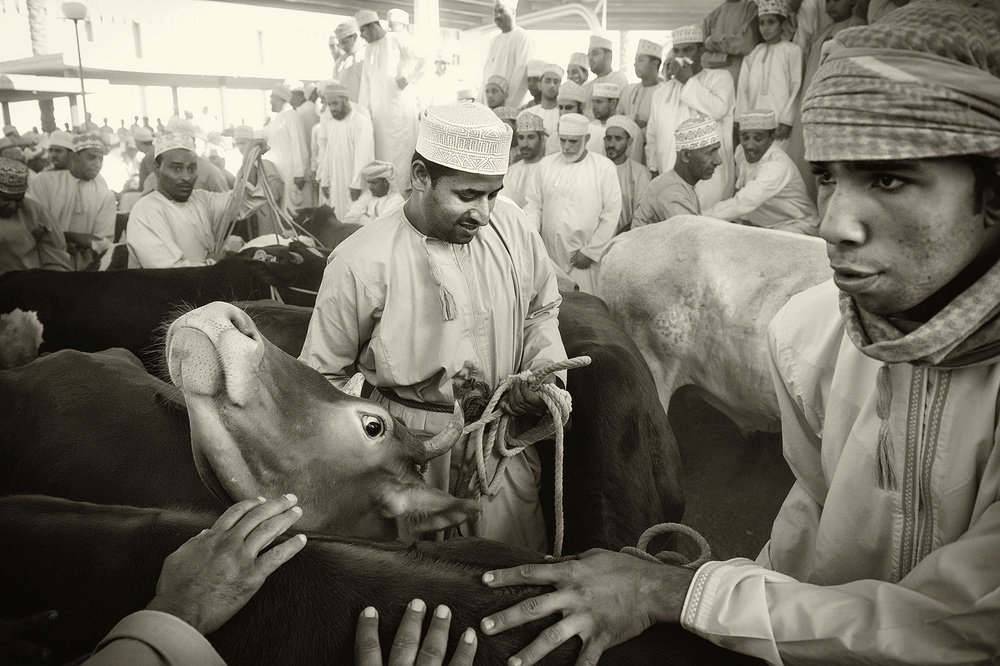 Mercado de animales vivos en Nizwa, Sultanato de  Omán. Foto: Ezequiel Scagnetti