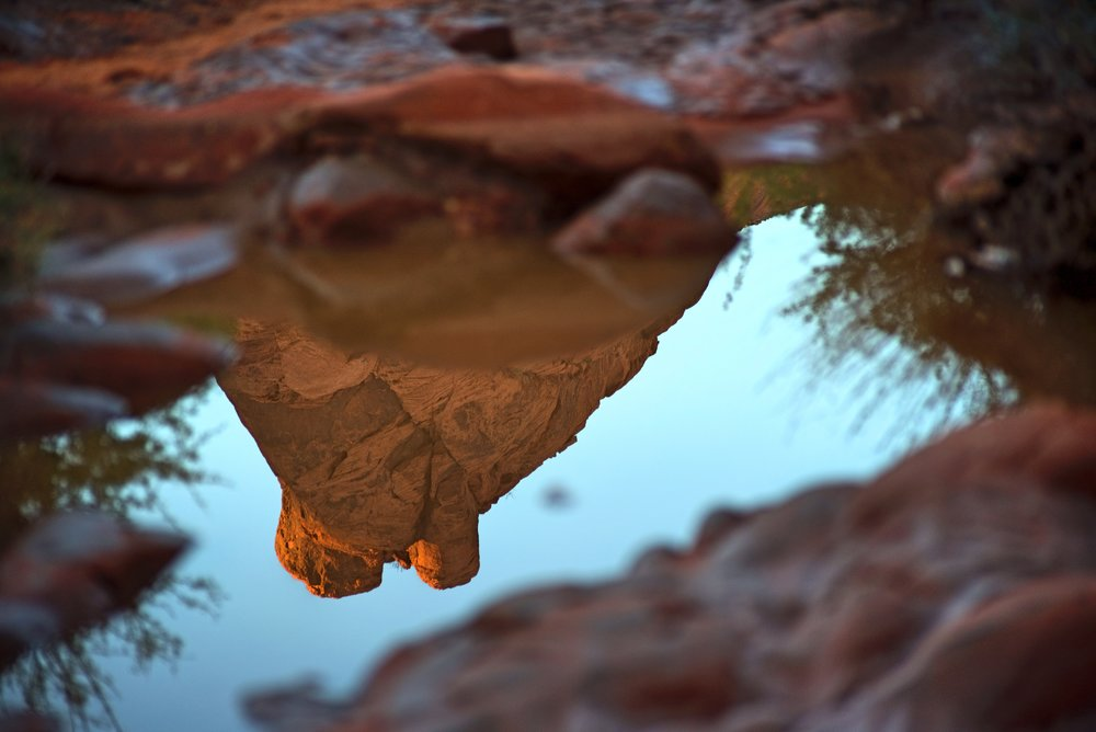 The sandstone formations of Petroglyph Canyon reflected in a puddle.