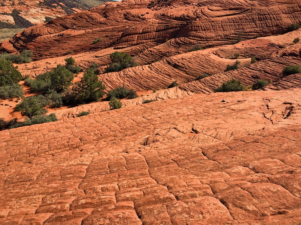 The layers of sandstone are all piled at different layers.