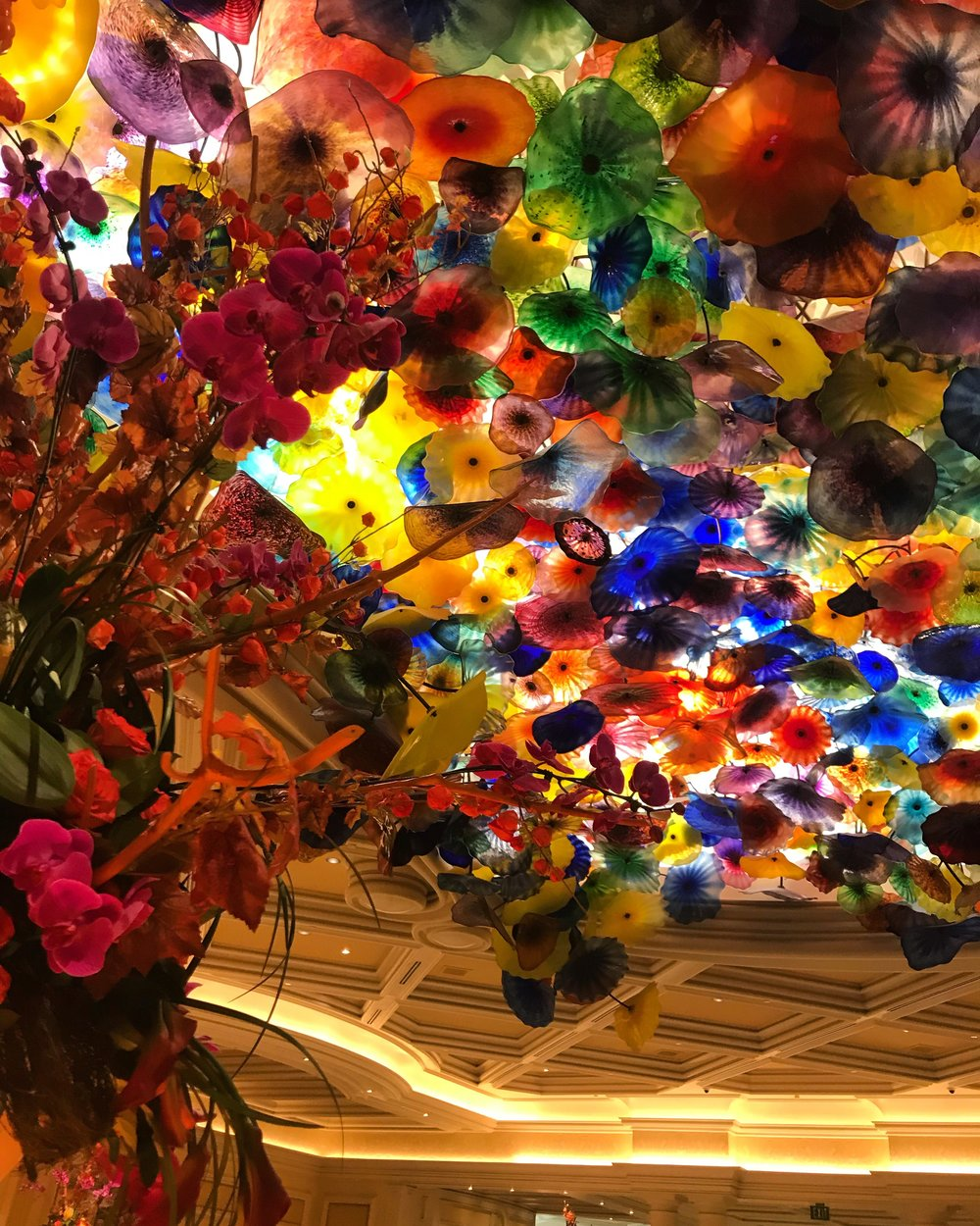 Dale Chihuly's hand-blown glass flowers.