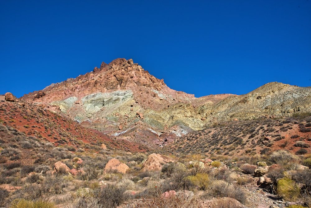 The Grapevine Mountains are super colorful.