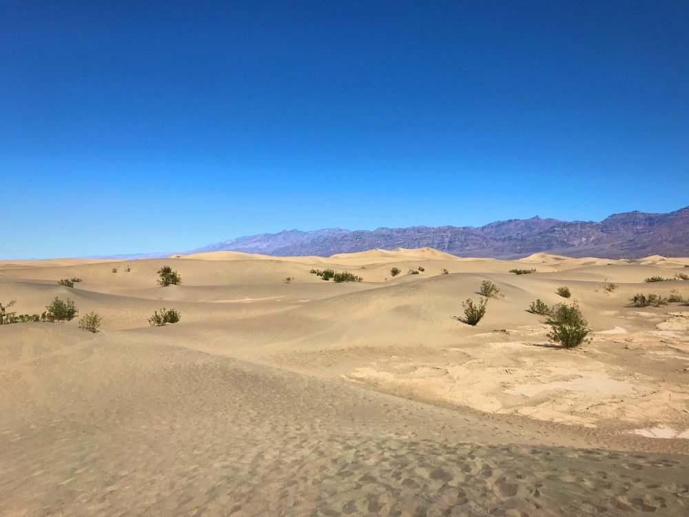 The dunes are fairly short when you get into them.