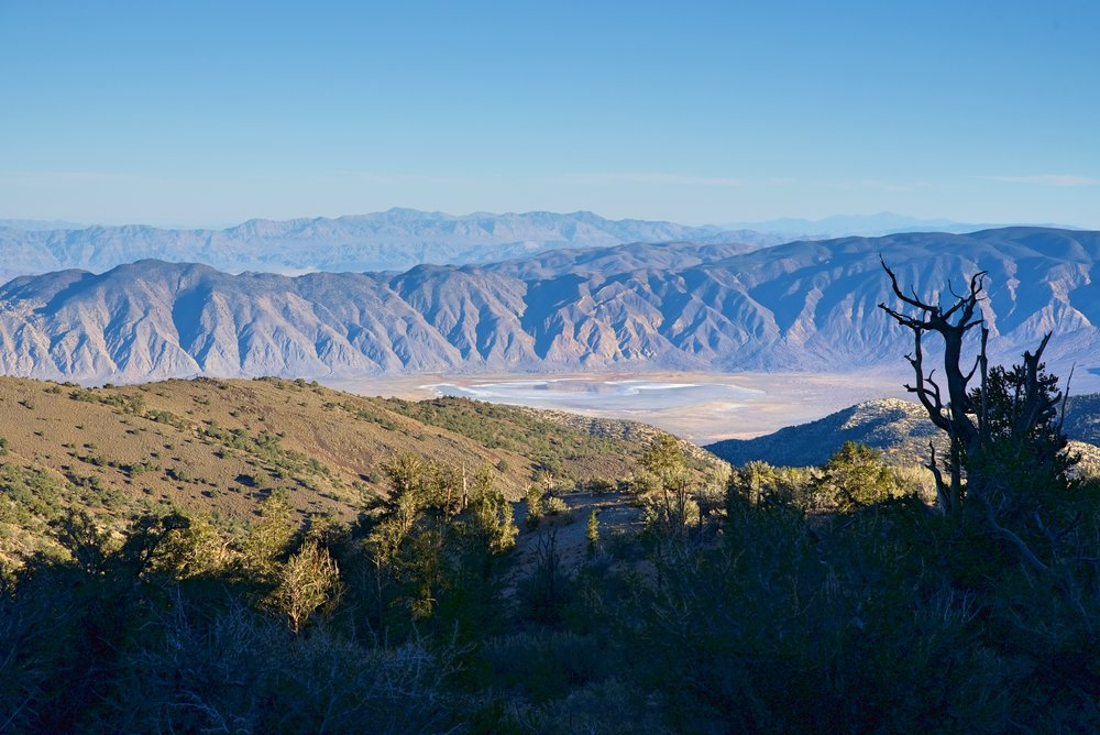 Besides the venerable trees, the Methuselah Trail also gives you great views of the mountains.
