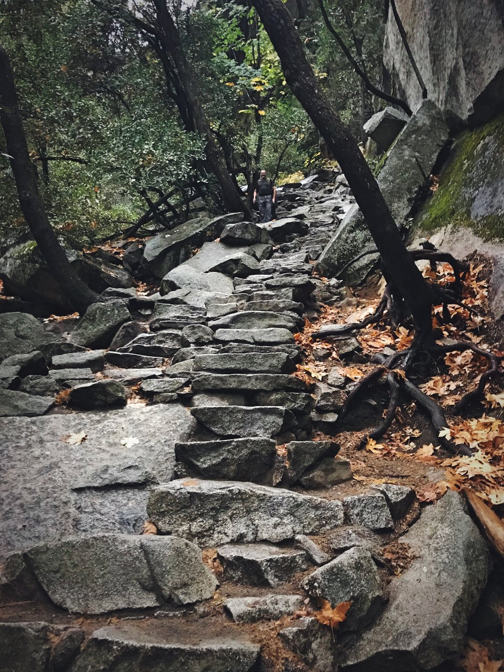 Some of the many granite stairs along the Mist Trail.