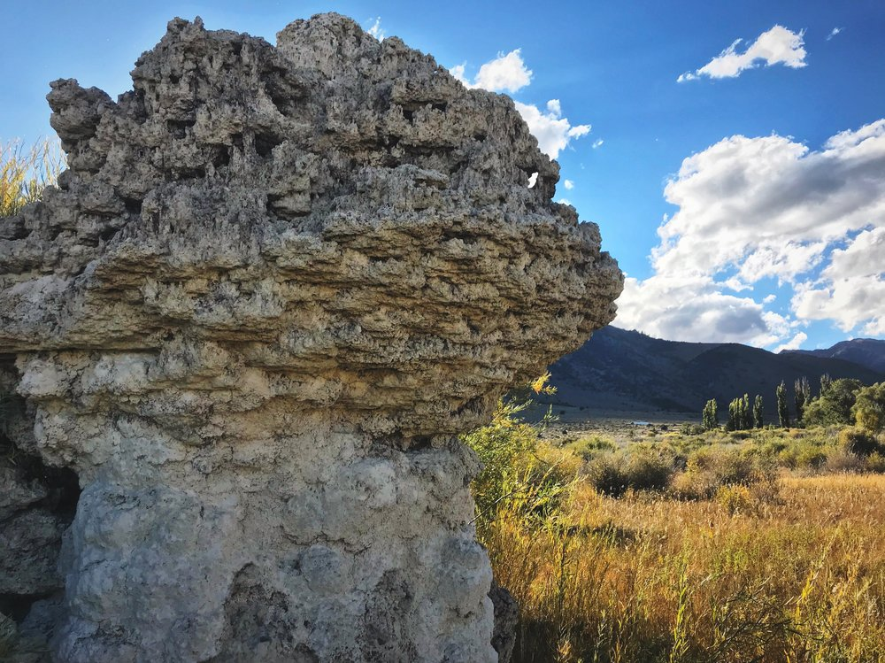 These tufa limestone formations can be found all around the shore of Mono Lake.