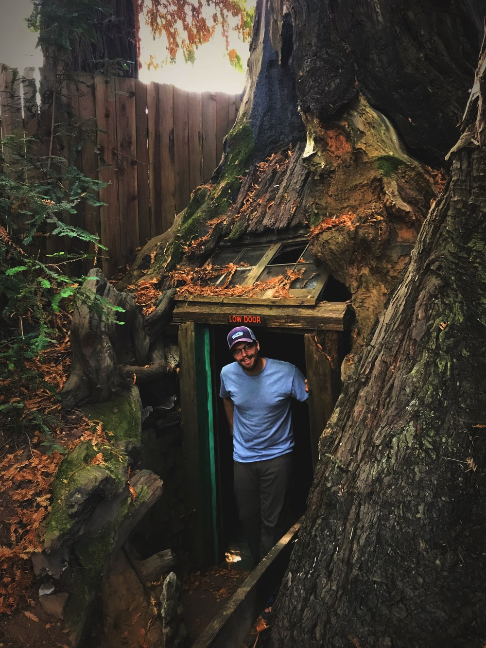 Ian emerging from the dark 20-foot-round, hollowed out stump house.