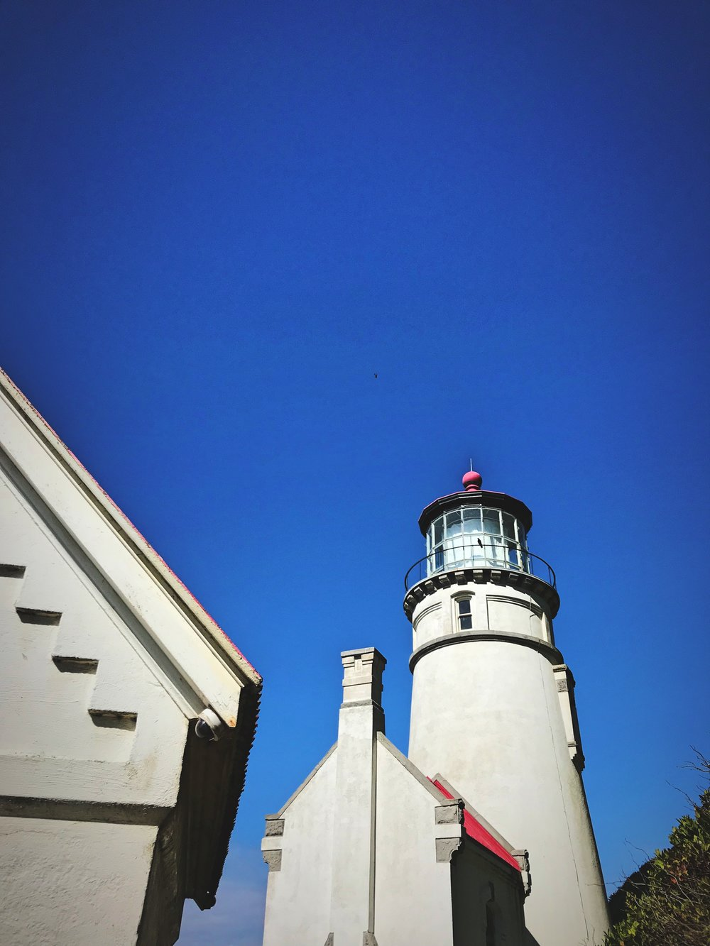 Besides the lighthouse, there are a lot of old out buildings and keepers' residence to check out.