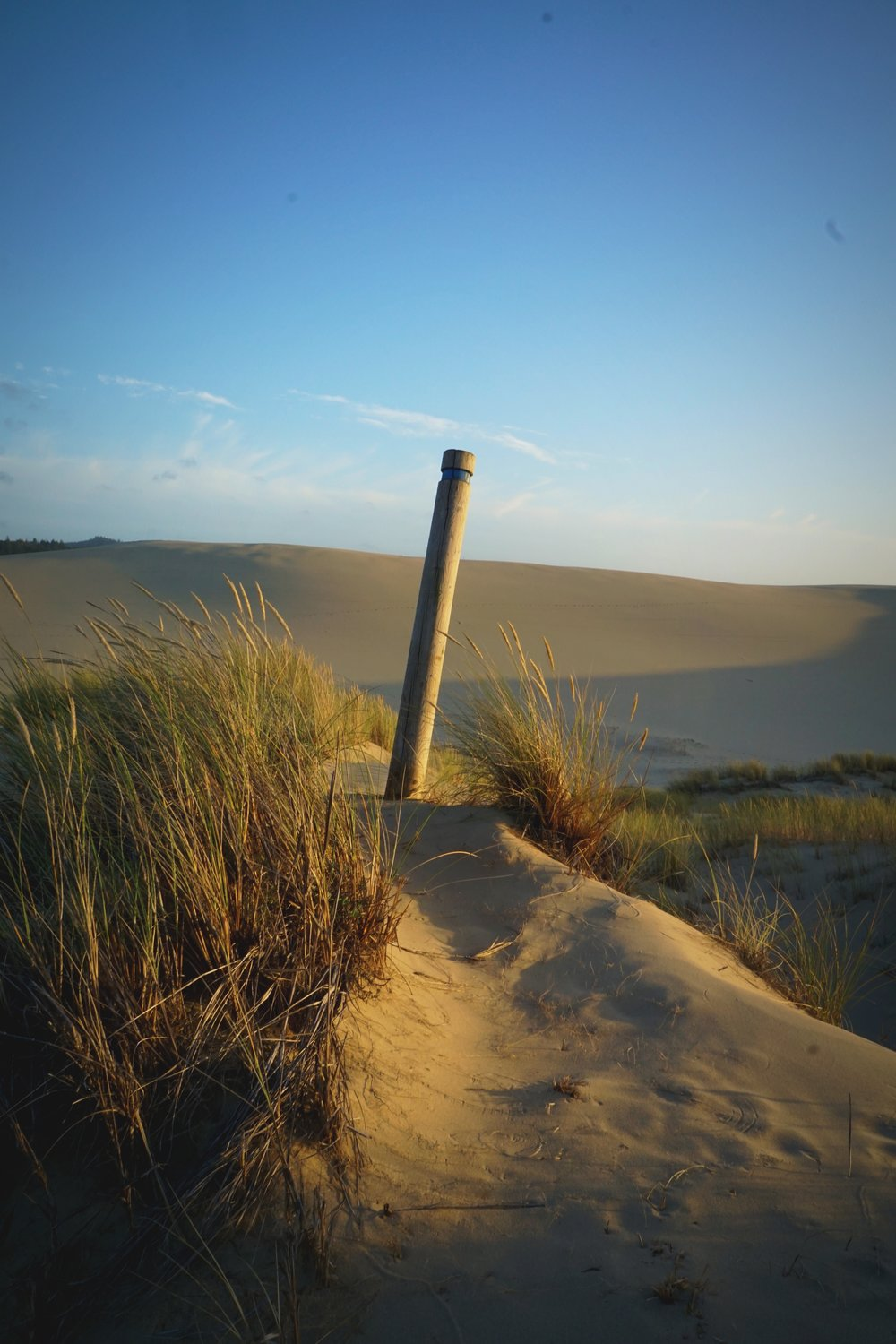 These posts help you find your way through the dunes and to the beach.