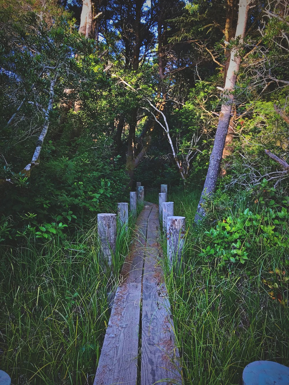 These wooden boardwalks make this part of the trail even more charming.