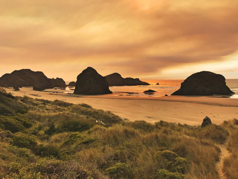 Most of the Oregon Coast is dotted with sea stacks.