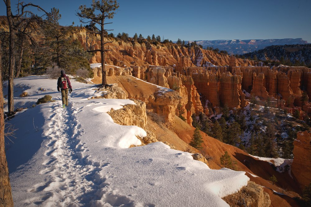 For nearly 3 miles you get to hike along the rim of Bryce Canyon and look down at the hoodoos in the canyon.