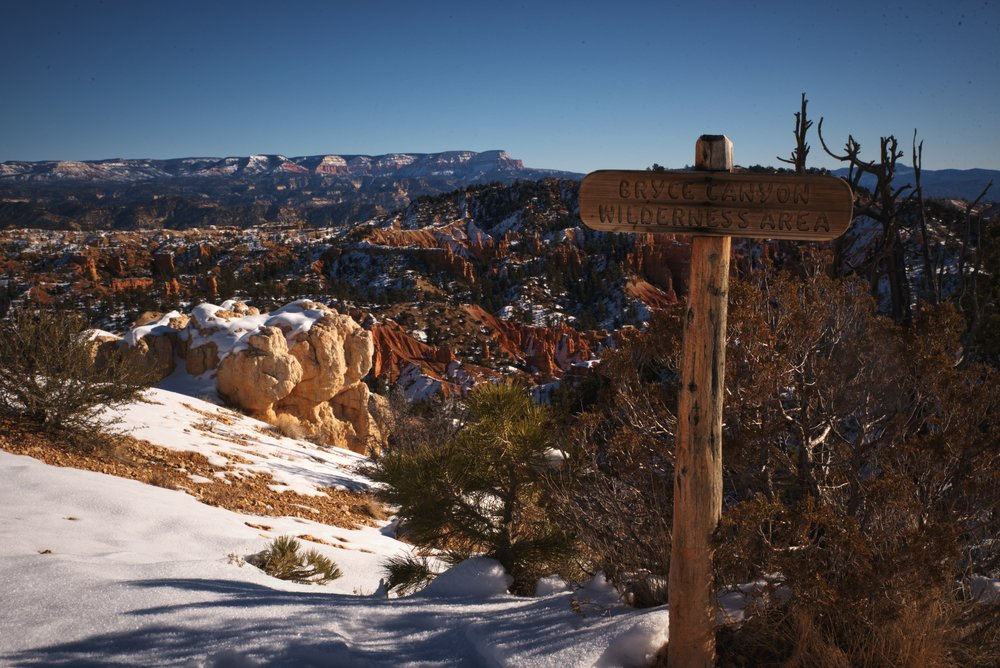 The Fairyland Loop takes you into the wilderness portion of Bryce Canyon and away from the more popular canyon rim.