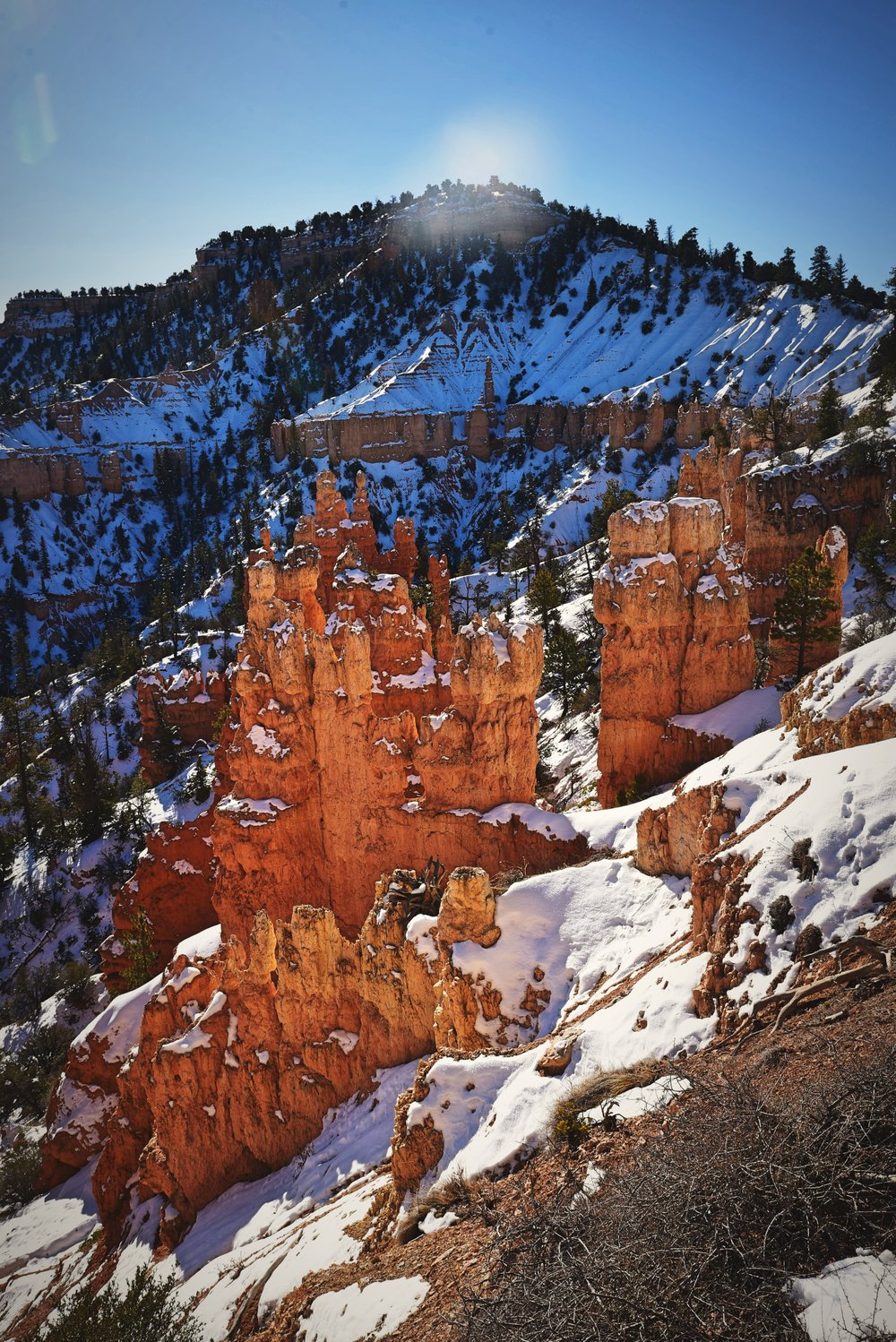 The hoodoos only look better with the snow on them.