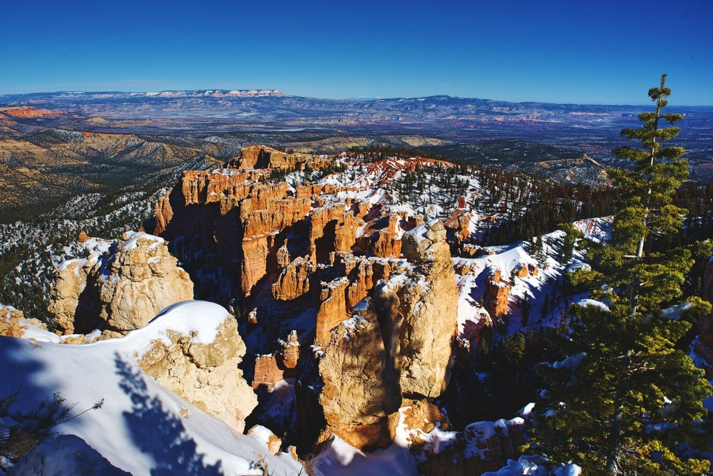On the rim of Bryce Canyon, you are standing on the top step of a huge geological formation called the Grand Staircase.