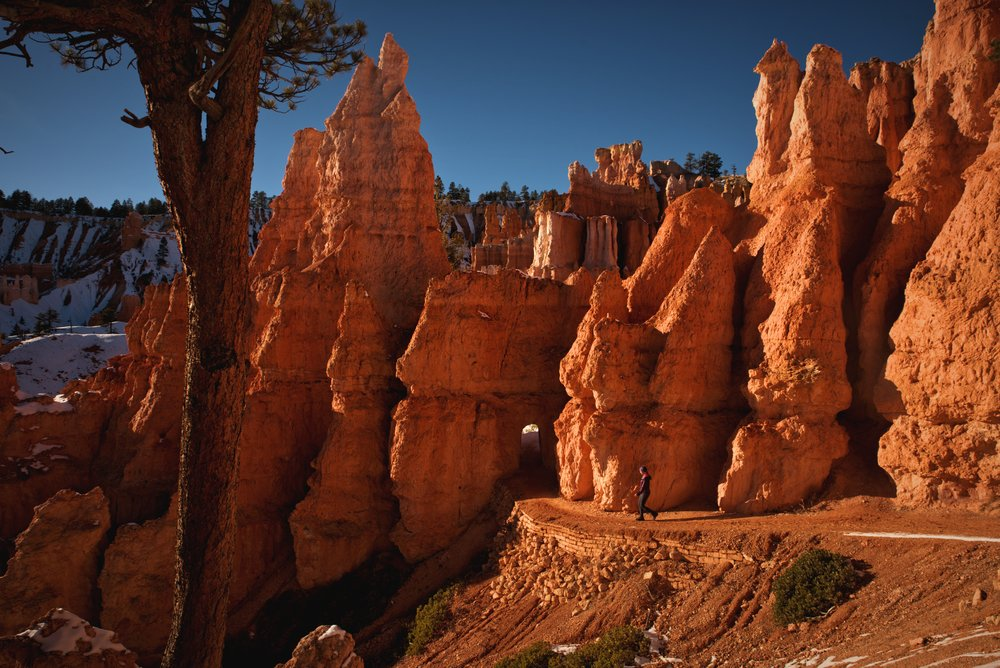 The Queen's Garden Trail is considered the easiest trail descending into the hoodoos of Bryce Canyon.