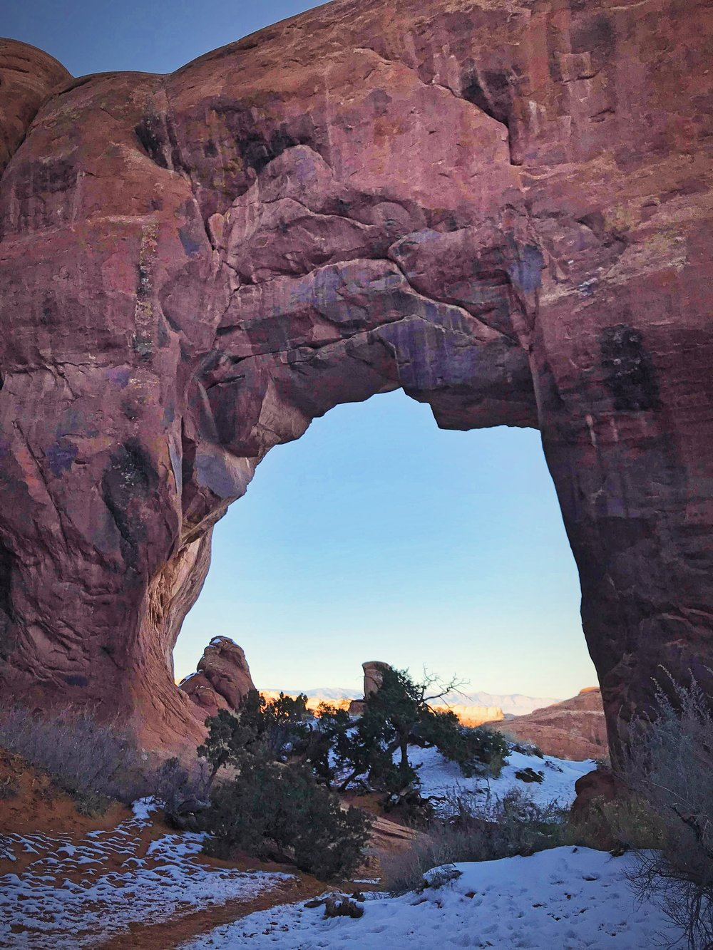 Pine Tree Arch is a very accessible arch. It's only a short distance from the trailhead.