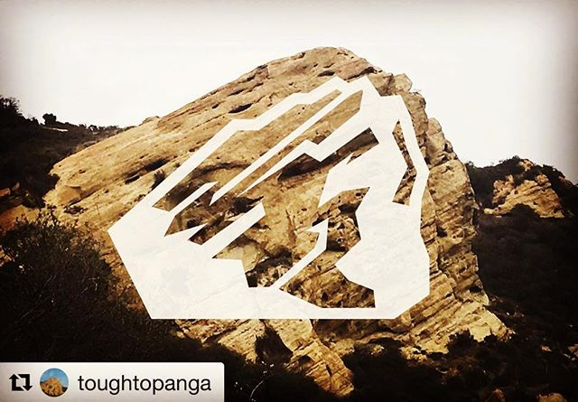 It's official...2019 will be the second year of the @toughtopanga with me as the Race Director!! Sign up for this local classic at early registration prices through December on @ultrasignup or visit www.toughtopanga.com for details.  It's going to be a grueling run in the Santa Monica Mountains on June 22nd!! . . . #toughtopanga #10k #blinddog #gsp #traildog #trailrunning #santamonicamountains #socal #logo #bulldogultra #ultra #trailrace #letsrun #outdoors #everyday #traillife #topanga #socal #mountains #plantbasedathlete #stoked #proud #readysteadygo