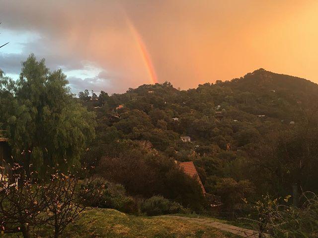 Backyard view between the rain storms.  The neighbor's house is lit.  Gotta go hit the trails now!! . . . #gsp #traildog #rainbow #sunset #rainstorm #trailrunning #santamonicamountains #toughtopanga #10k #bulldogultra #ultra #50k #trailrace #letsrun #outdoors #everyday #traillife #topanga #socal #mountains #plantbasedathlete #nofilter