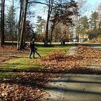 fall clean ups.jpg