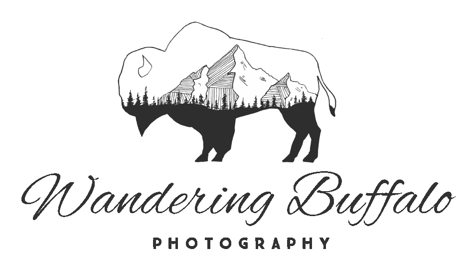 Wandering Buffalo Photography | Denver CO & Buffalo NY