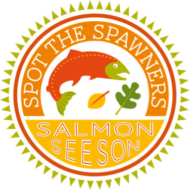 salmonimage.png