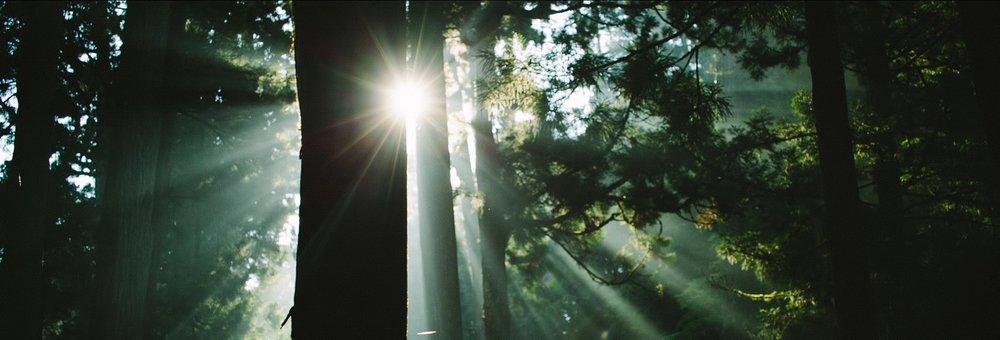 KOYASAN SHINGON BUDDHISM (short ver.) by augment5 Inc..00_01_44_18.Still004.jpg